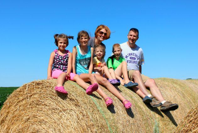 family haystack